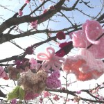 More Knitted Cherry Blossoms