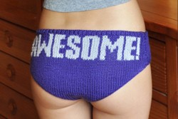 """Knitting is Awesome!"" Hipster Panties Knitting Pattern"